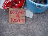 P1010058